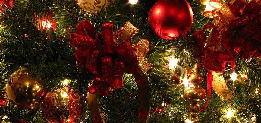 Come smaltire gli alberi di Natale